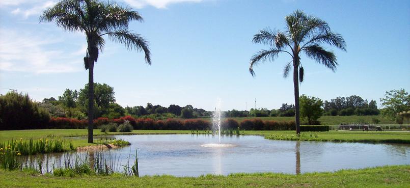 Alquiler de maquinas viales retroexcavadoras for Lagunas artificiales para jardin